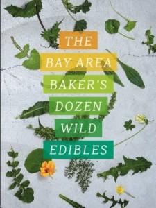 The Bay Area Baker's Dozen Wild Edibles Book Cover